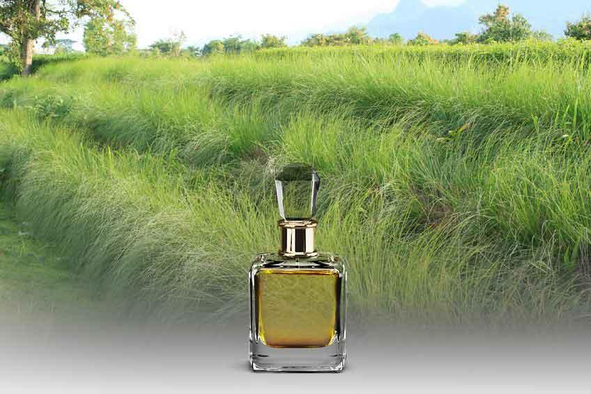 olio essenziale di vetiver