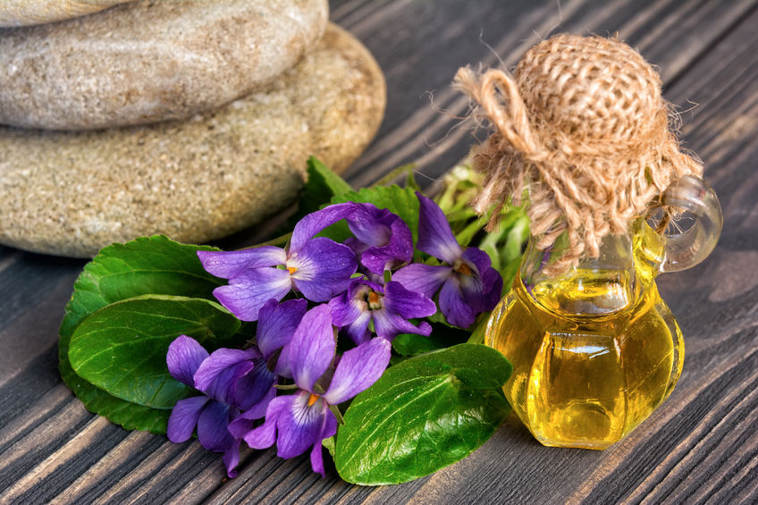 olio essenziale di violetta
