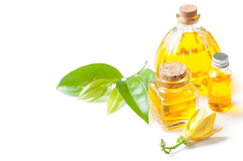 olio essenziale ylang ylang